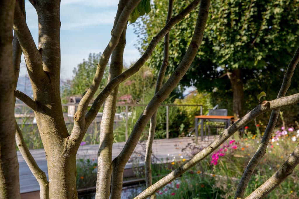 Privater Garten, Holzboden & Wasser, Hünenberg