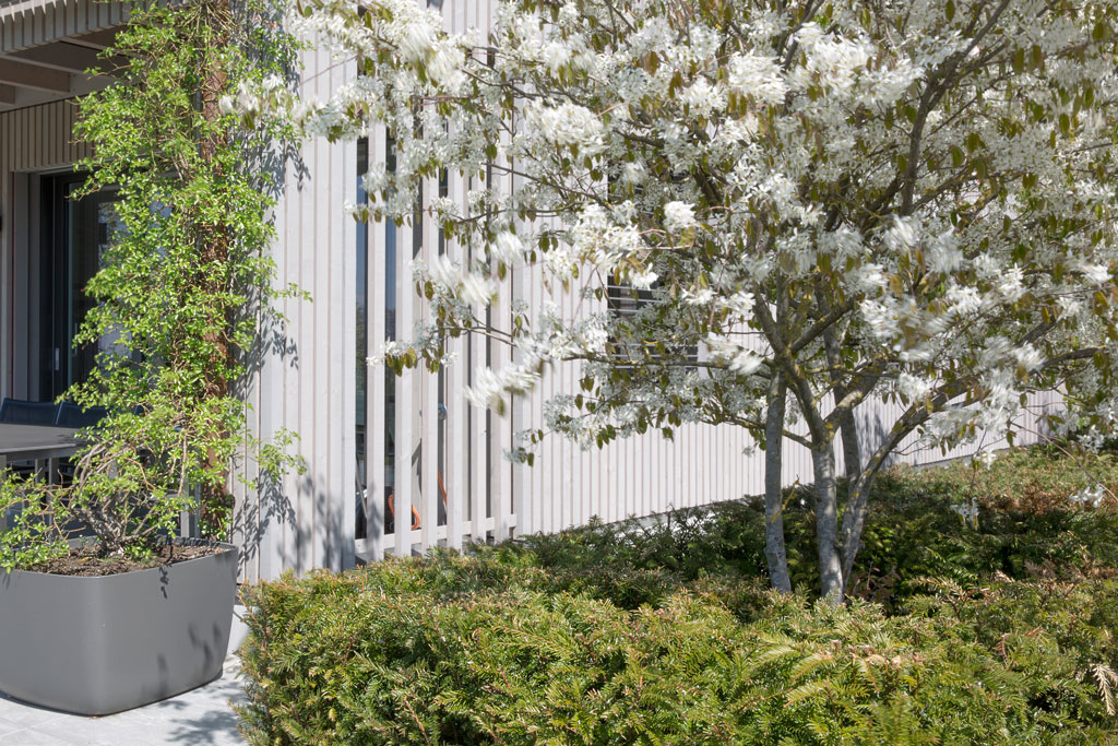 Privater Garten, Zug