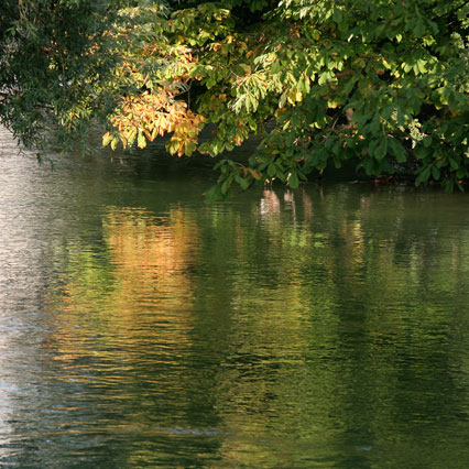 Trauerkarte, warme Herbstfarben spiegeln sich in der Lorze