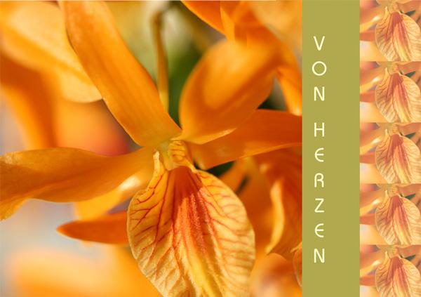"""Orchideenblüte mit Text """"Von Herzen"""""""