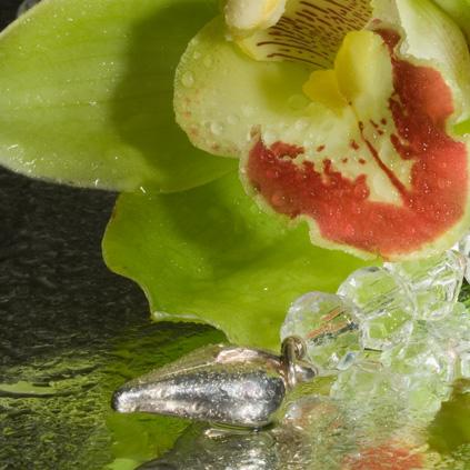 Orchidee mit Schmuck, Nahaufnahme