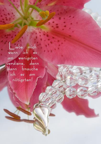 Pink Lilie mit Schmuck und Spruch