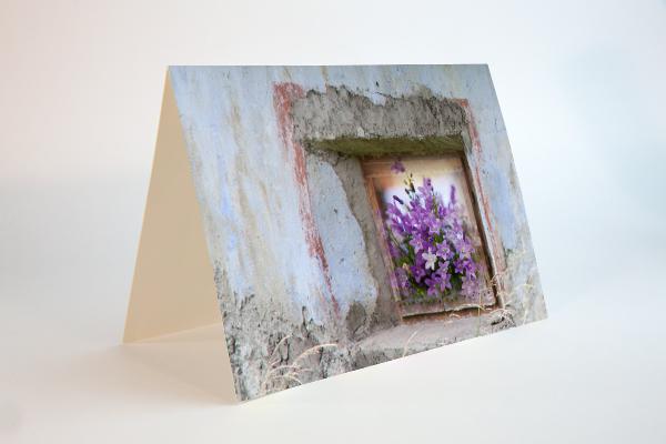 Blumenfenster in der Toscana