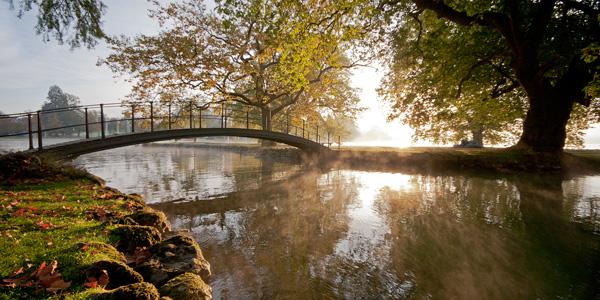Brücke im Villettepark in Cham, Herbststimmung