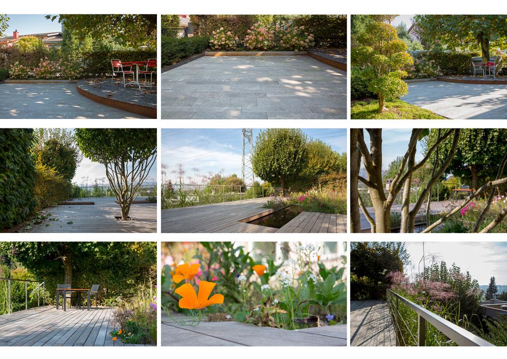 Zusammenstellung verswchiedener Gartenbilder eines einzelnen privaten Gartens in Hünenberg
