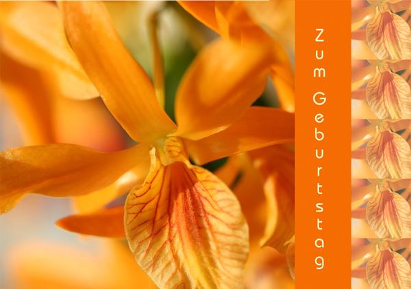 """Orange Orchideenblüte, Text """"Zum Geburtstag"""""""