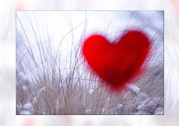 Rotes Herz im Winter mit Gras im Hintergrund
