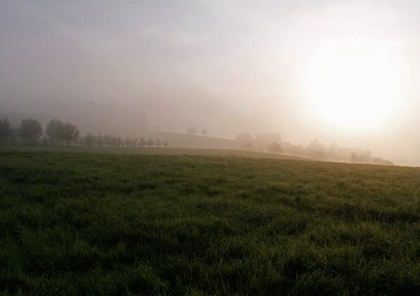 Morgenstimmung in Hünenberg