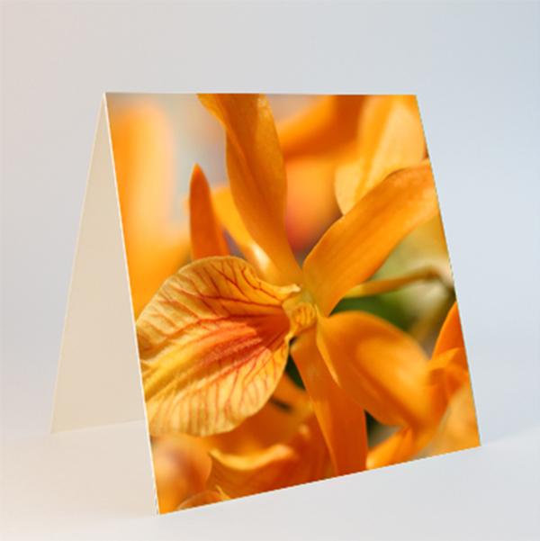 Fotokarte Format quadratisch