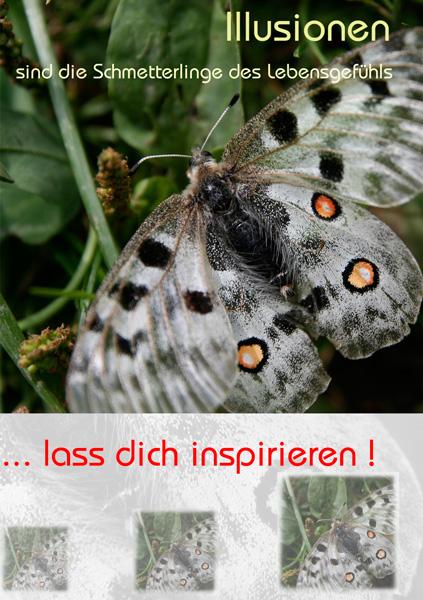 Schmetterling mit Text