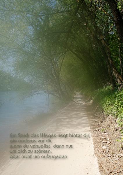 Weg an der Reuss mit Spruch